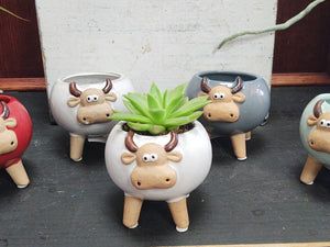 Bull Ceramic Pot (with or without Plant)