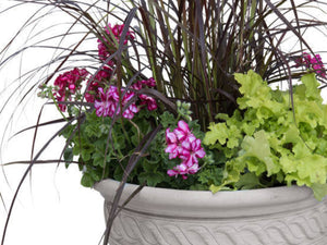 Summer Flower/Plant Container, Florist's Choice
