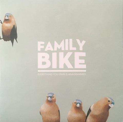 "Family Bike ""Everything You Own Is Anagrammed"" LP (2015)"