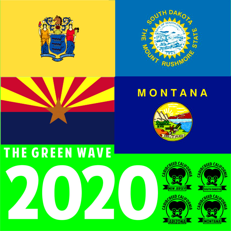 The U.S Election 2020 | GREEN WAVE! | Cannabis Wins!!!