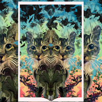 """Blooming Cat-Aract"" Limited Edition Print"
