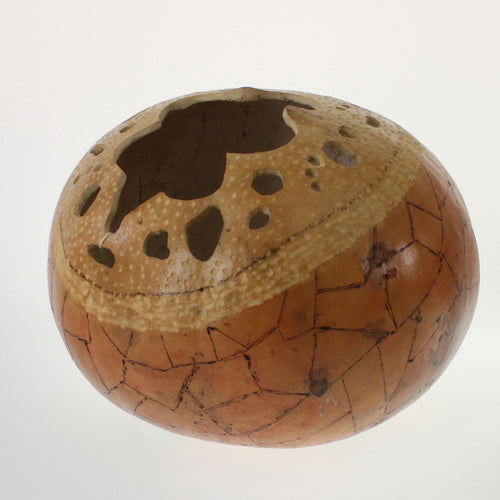 Vasquez - Carved Gourd Natural