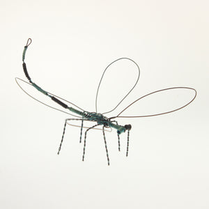 Carmona - Dragonfly Black-Green