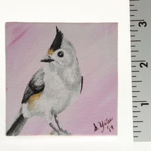 Load image into Gallery viewer, Yates - Tiny Painted Canvas - Titmouse Black/White/Grey On Blush Pink