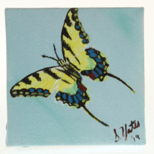 Yates - Tiny Painted Canvas - Swallowtail Butterfly Yellow/Black On Sky Blue