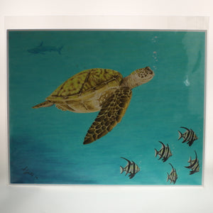Yates - Print Of Colored Pencil Drawing - Sea Turtle