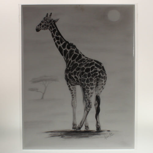 Yates - Print Of Charcoal/Graphite Drawing - Leggy Gal