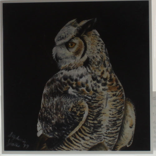 Yates - Print Of Oil Painting - Great Horned Owl