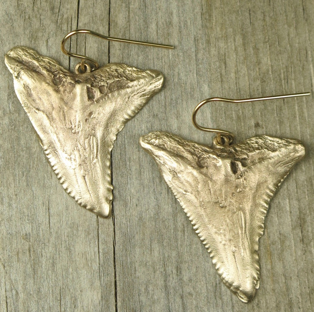 Blue Shark Tooth Earrings