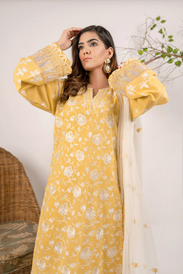 aik-atelier-lawn-20-vol-3-look-03-2