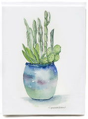 Cactus - box of 8