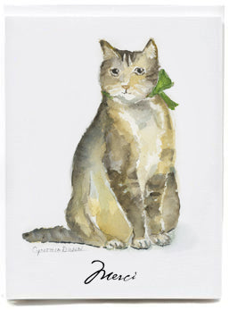 Cat Merci - box of 8