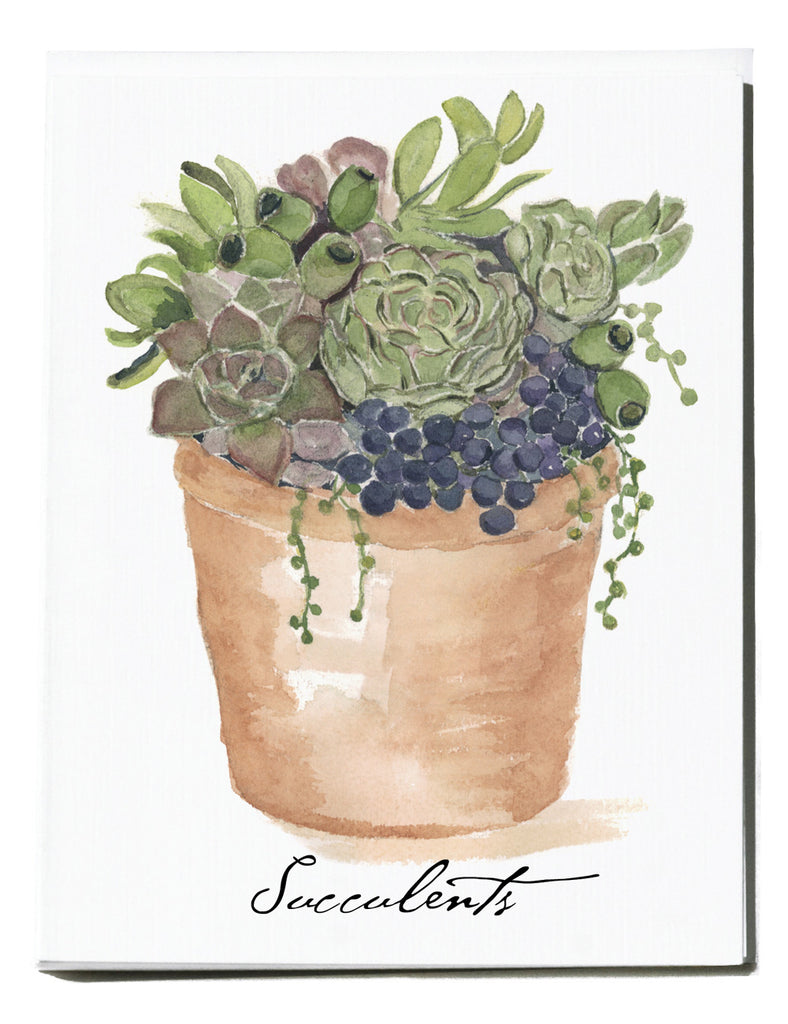 Succulent Note Card - Box of 8