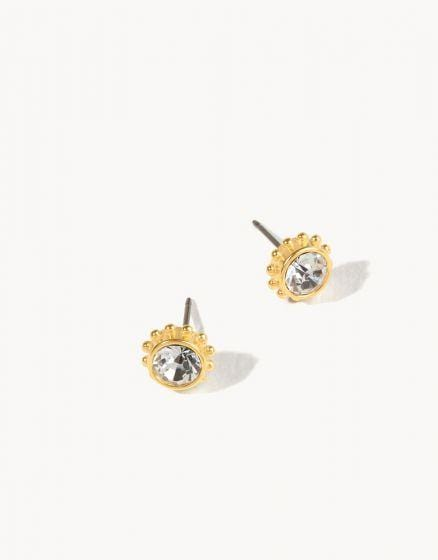 Crystal Adorned Stud Earrings