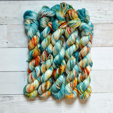 West Coast | Mini Skein