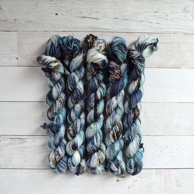 Inner Harbor | Mini Skein