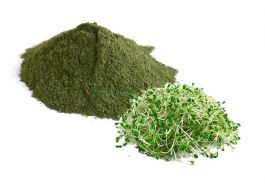 ALFALFA POWDER 1 OZ