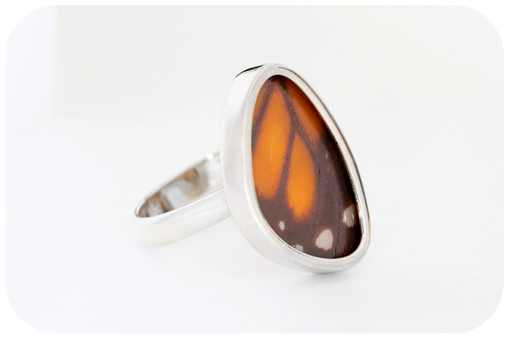Butterfly Wing Ring in Sterling Silver - 20mm