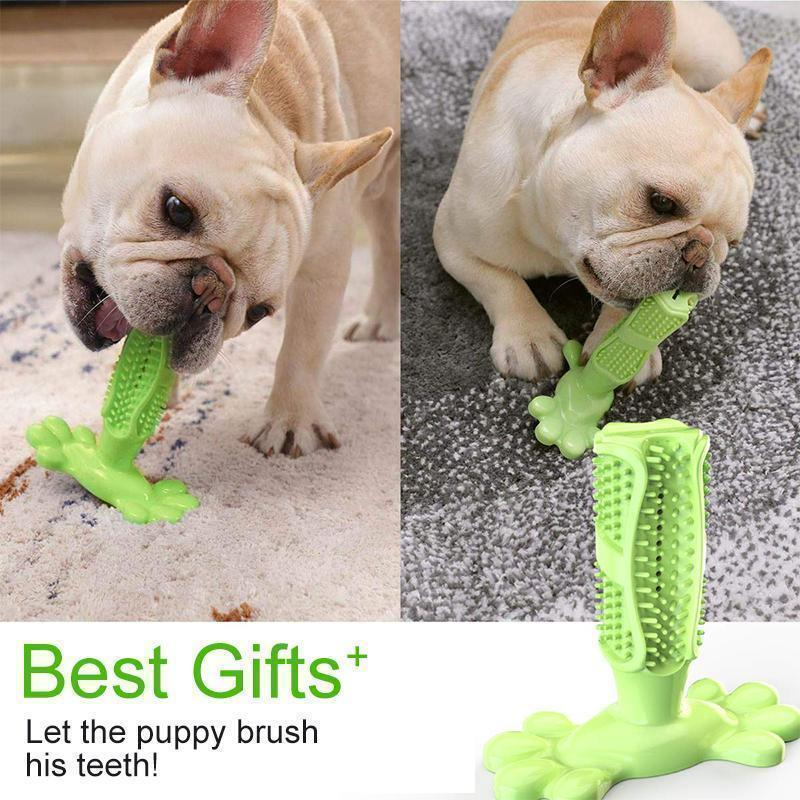 Dog Toothbrush
