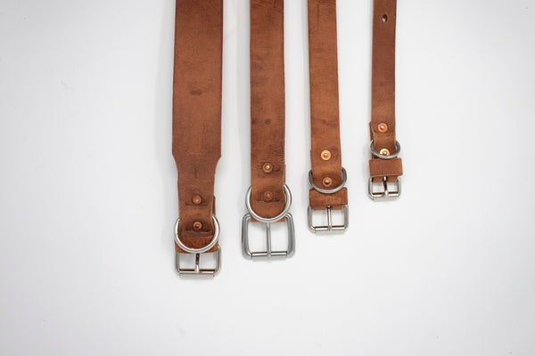 Leather Dog Collar - Moody's Leather Co.