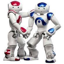 Load image into Gallery viewer, Smart Robot Lawrence Special Deal (Free Shipping)