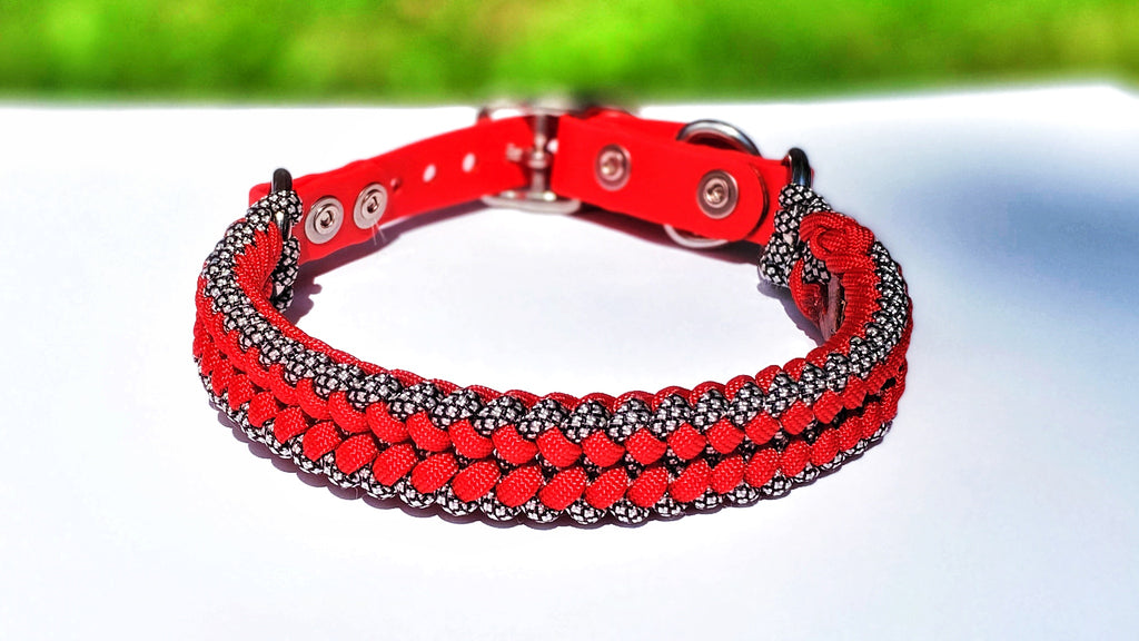 MERCURY Dog Collar