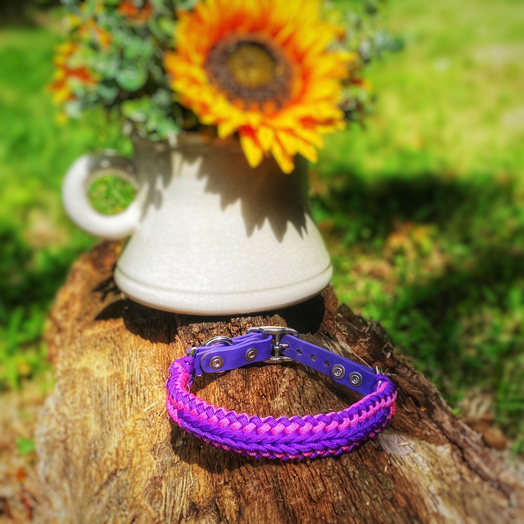 PURPLE RAIN Dog Collar