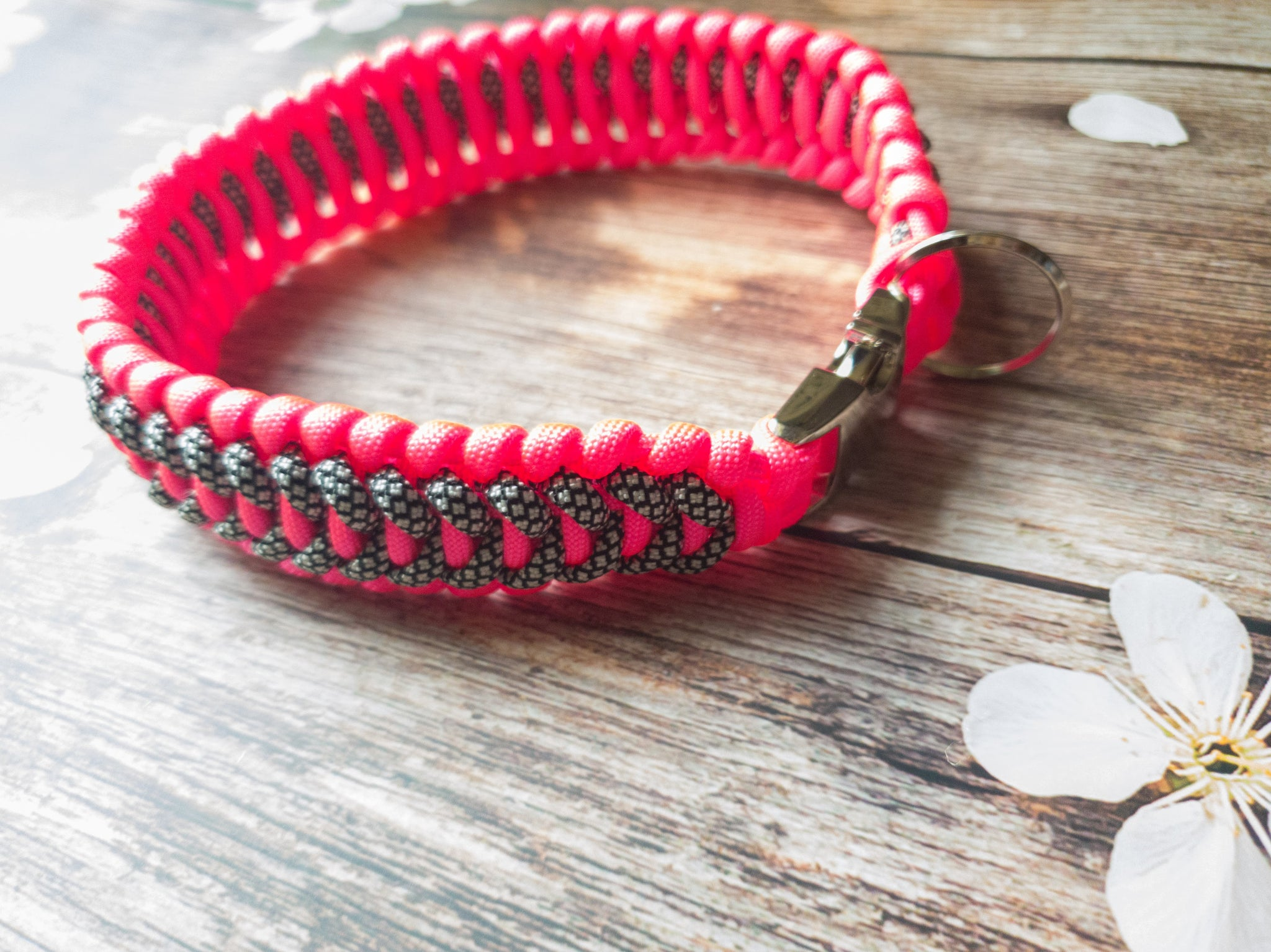 Trilobite Dog Collar Neon Pink & Spotted Black