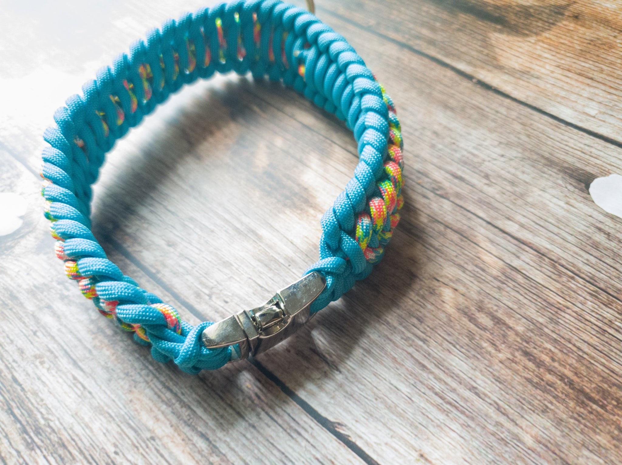 Trilobite Dog Collar Turquoise & Cotton Candy Mix