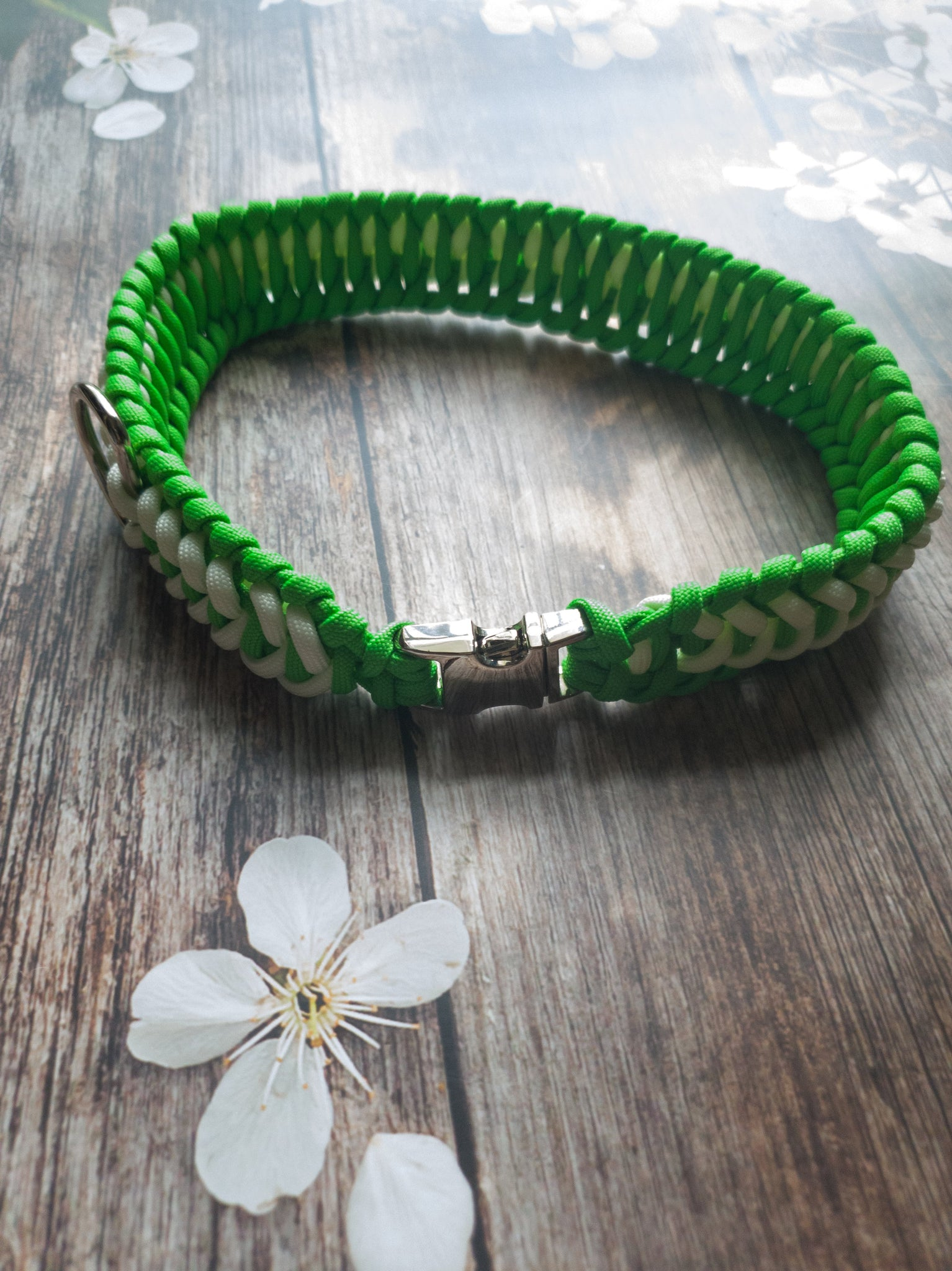 Trilobite Dog Collar Lime Green & White
