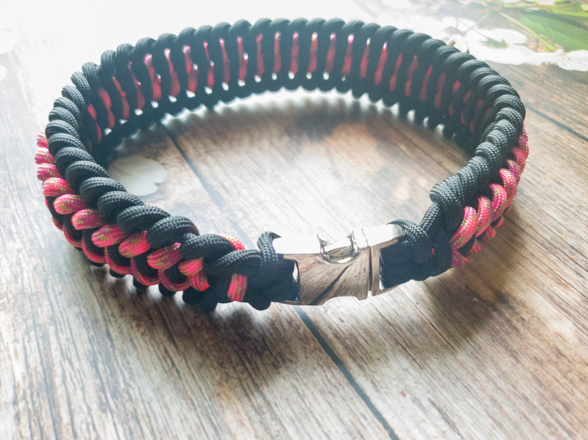 Trilobite Dog Collar Black & Pink