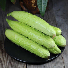 Load image into Gallery viewer, Cucumber-White白玉水果黄瓜#V036 - Songsco.com - Ocean Nursery