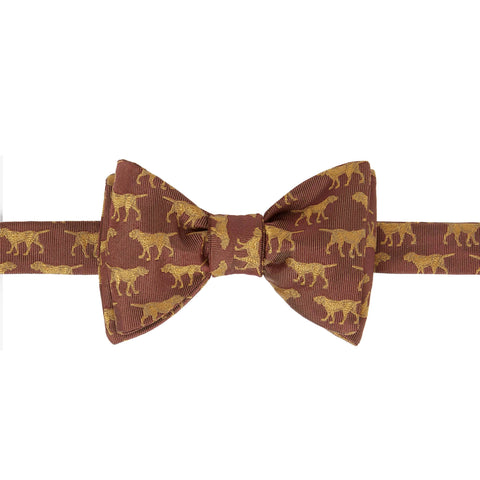 Orange Labrador Bow Tie