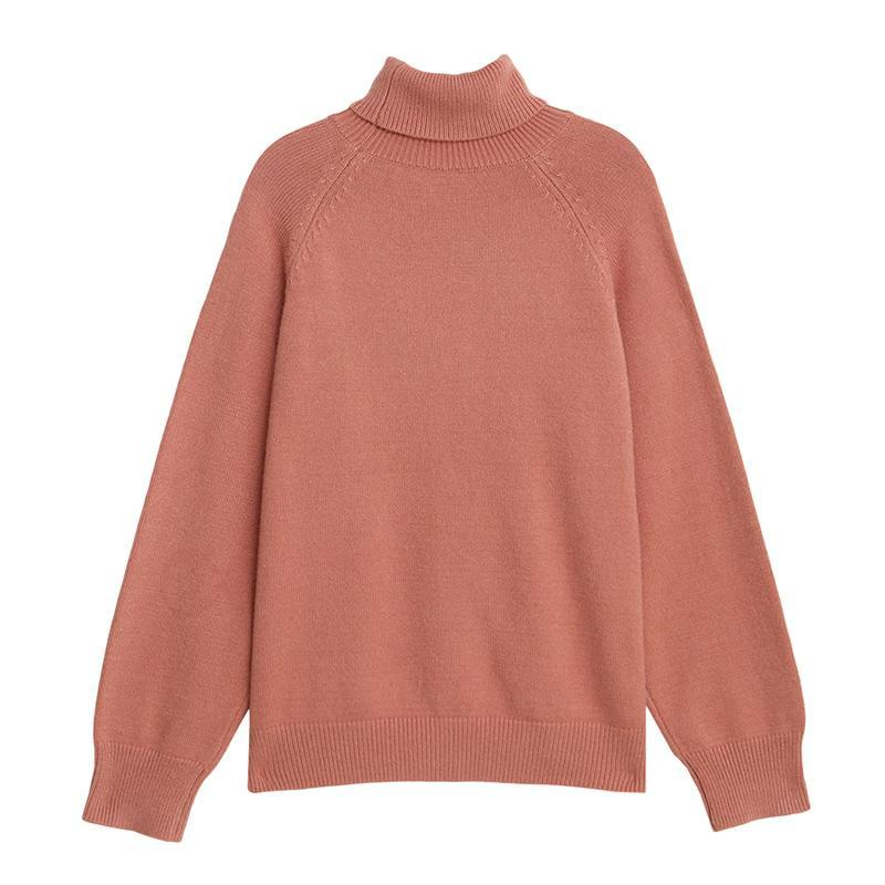Raglan Sleeve High Collar Knit Sweater