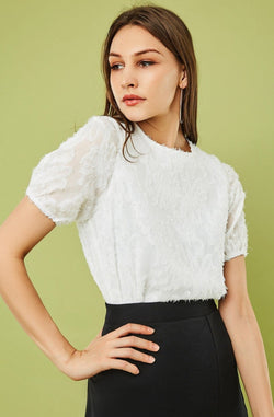 Short-Sleeve Round-Neck Feather Lace Blouse
