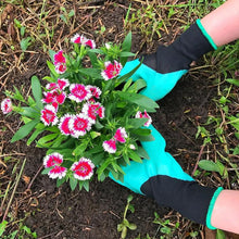 Load image into Gallery viewer, Claws Garden Gloves - Smart Explore