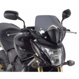 GS A309 Givi Screen
