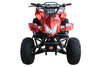 Coolster 3125a2 125cc Fully Automatic Mid Size ATV - Power Dirt Bikes