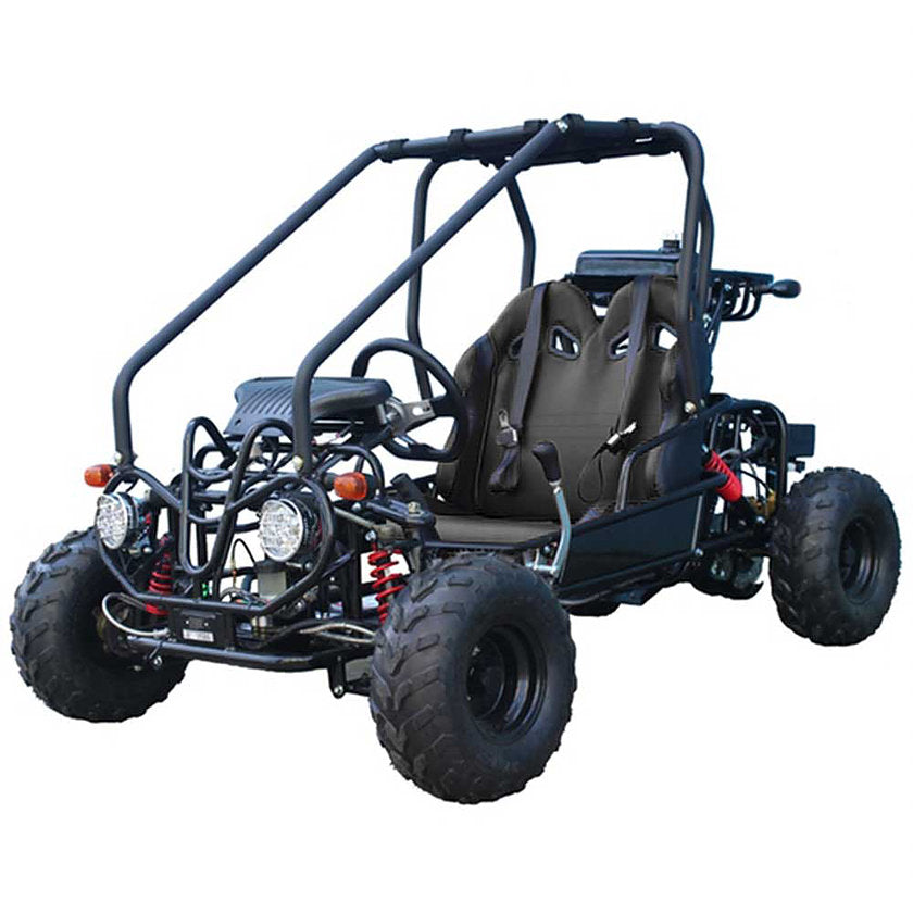TaoTao GK110 Kids 110cc Go Kart - Power Dirt Bikes