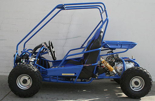 Mini Raptor 125cc Kids Go Kart