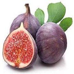 Fig Concentrate