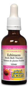 Echinacea Fresh Herb Tincture 100ml