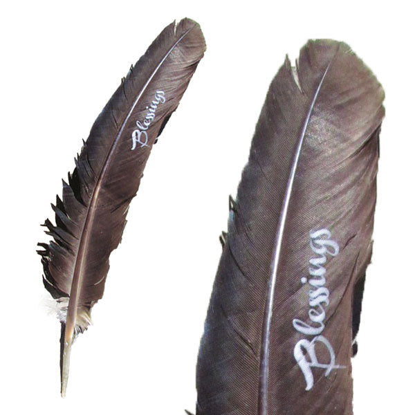 Blessings Smudging Feather