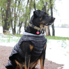 Load image into Gallery viewer, Extreme Weather Dog Puffer Coat