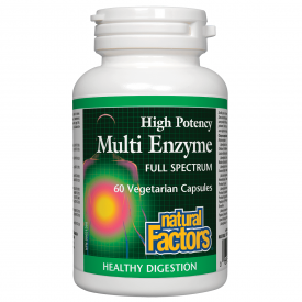 Natural Factors Multi Enzyme High Potency