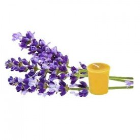 Honey Candles Ltd Pure Beeswax 2 inch Votive Country Lavender Candle