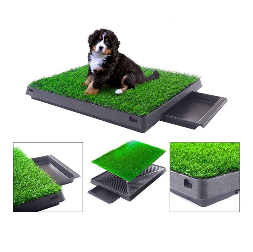 APETLOVE™-Indoor/Outdoor Dog Potty