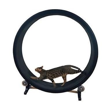 APETLOVE™-Cat climbing wheel treadmill