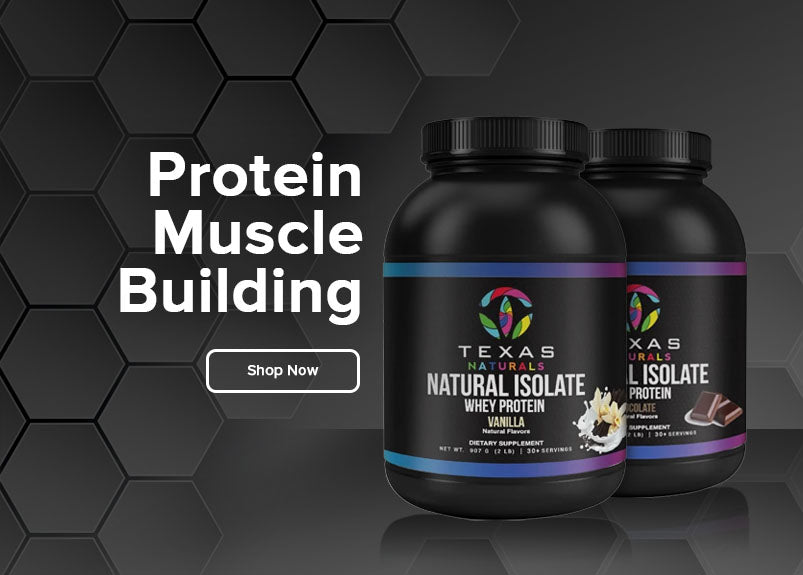 Protein Muscle Building