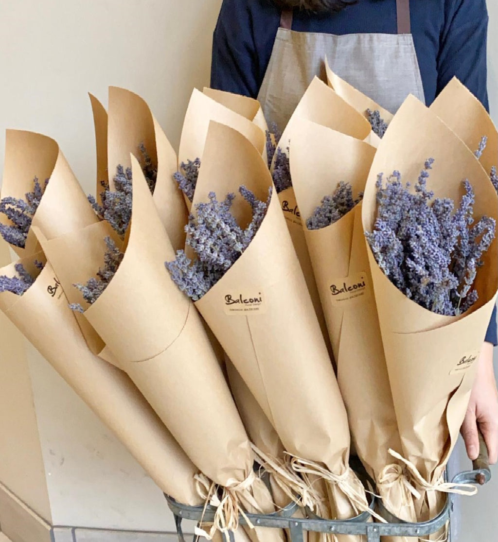 French Dried Lavender Bouquet from Provence